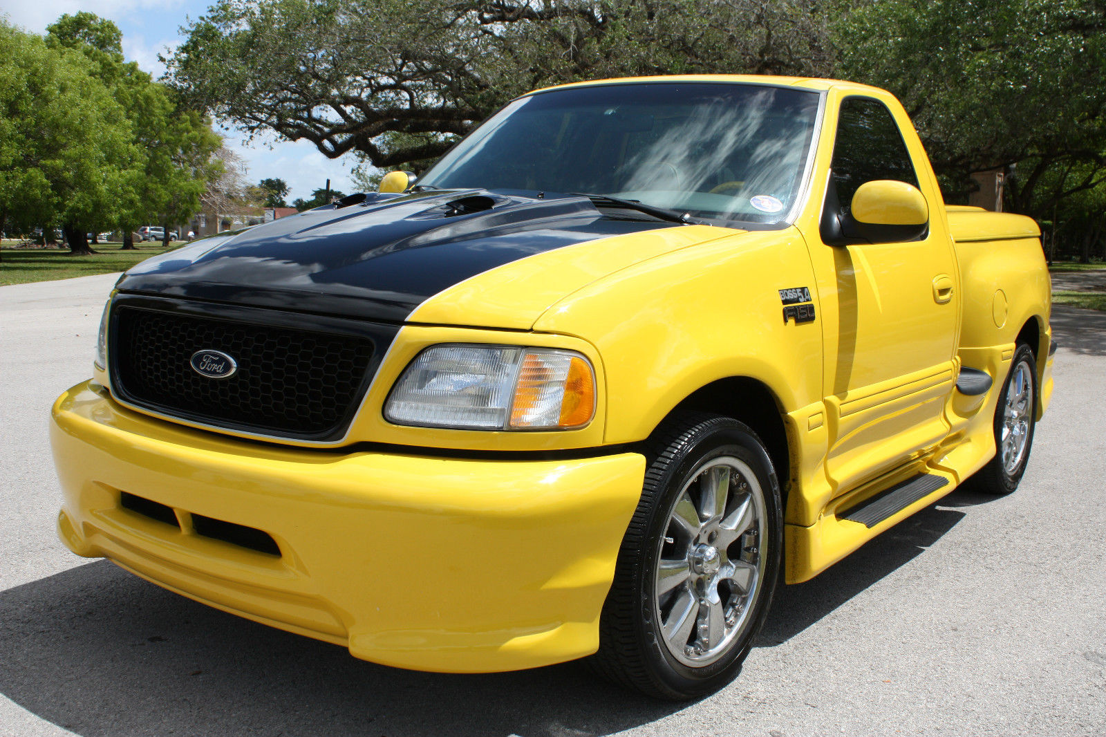 2002 ford f 150 boss 5 4 for sale. Black Bedroom Furniture Sets. Home Design Ideas