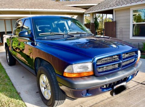 extremely clean 2003 Dodge Dakota pickup for sale