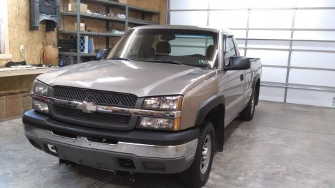 some rust 2003 Chevrolet Pickups WT pickup for sale
