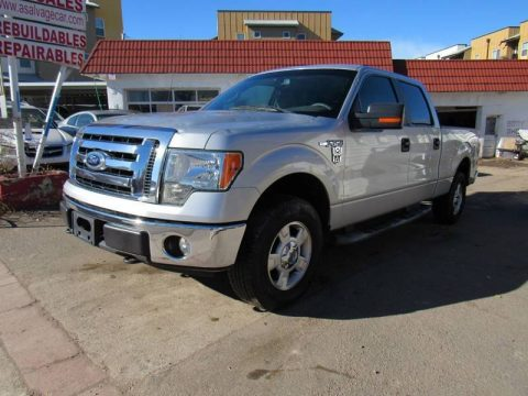 hail damage 2009 Ford F 150 FX4 pickup for sale