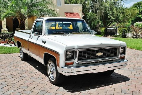 low miles 1974 Chevrolet Cheyenne pickup for sale